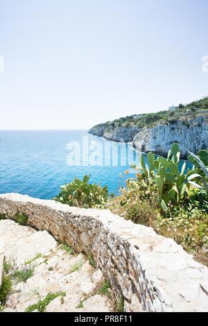Apulien, Grotta Zinzulusa, Italien - Kakteen neben der Treppe von der berühmten Grotte Zinzulusa Stockbild