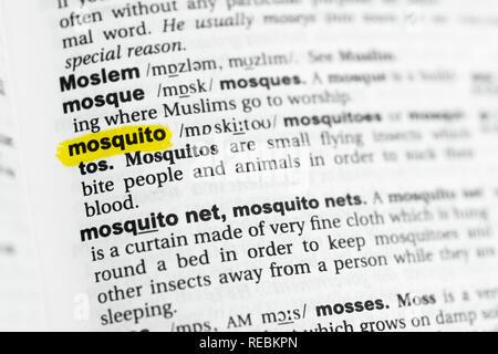 """Hervorgehobene englische Wort """"Moskito"""" und seiner Definition im Wörterbuch. Stockbild"""