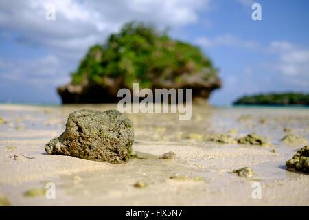 Nahaufnahme der Felsen am Strand Stockbild