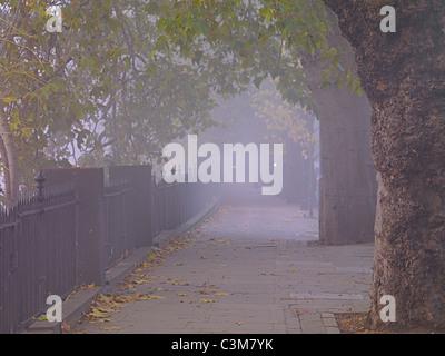 Die Böschung London an einem nebligen Morgen Stockbild