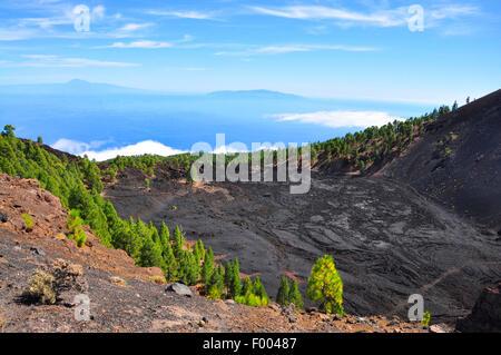 San Antonio Volcano, Kanarische Inseln, La Palma Fuencaliente Stockbild