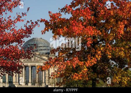 Berlin, Reichstag, im Freien im Herbst Stockbild