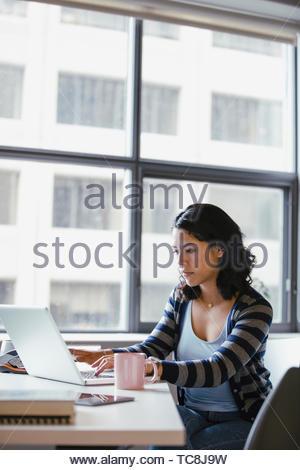 Geschäftsfrau, die Arbeiten am Laptop im Büro konzentriert Stockbild
