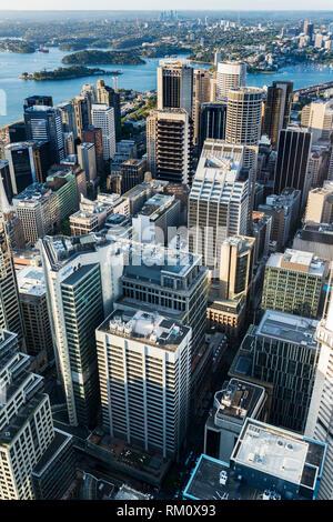 Ein Luftbild von Sydney. Stockbild