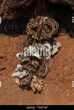 Tiere Totenköpfe auf einem Senufo fetish House, Savanes Bezirk, Niofoin, Elfenbeinküste Stockbild