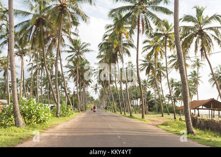 Coastal Highway, Marawila, Sri Lanka, Asien Stockbild