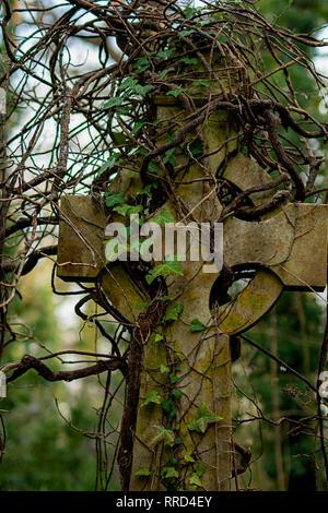 Alte Steine im Arnos Vale Friedhof überwuchert von Efeu Stockbild