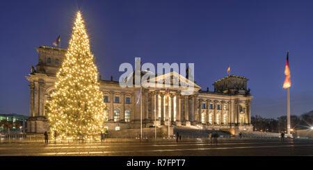 Weihnachtsbaum vor der Reichstag, Berlin Stockbild