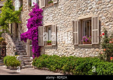 Blüte Bougainvillea, steinerne Treppen und Eingang in St Paul de Vence, Côte d'Azur, Frankreich zu mittelalterlichen Stockbild