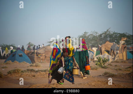 Frauen in einem Peul-Camp auf dem Festival Cure Salée, Niger Stockbild
