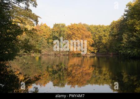 Berlin, Deutschland. Okt, 2018 18. Die Bäume an einem Teich im Tiergarten hell leuchten. Credit: Paul Zinken/dpa/ZB/dpa/Alamy leben Nachrichten Stockbild