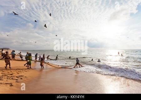 Die traditionelle Fischerei, Sri Lanka, Asien Stockbild