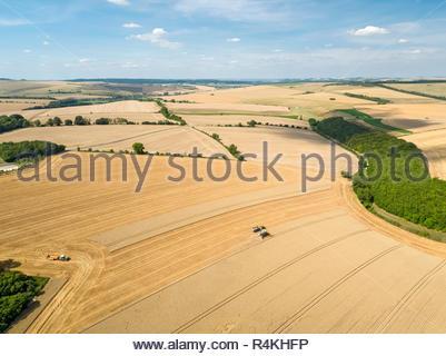 Ernte Antenne Landschaft des Feldhäckslers schneiden Sommer Weizenfeld farm Crop Traktoren Anhänger und blauer Himmel verbinden Stockbild