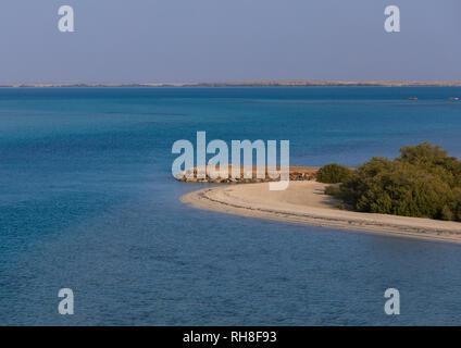 Leeren Strand mit Mangroven, Rotes Meer, Farasan, Saudi-Arabien Stockbild