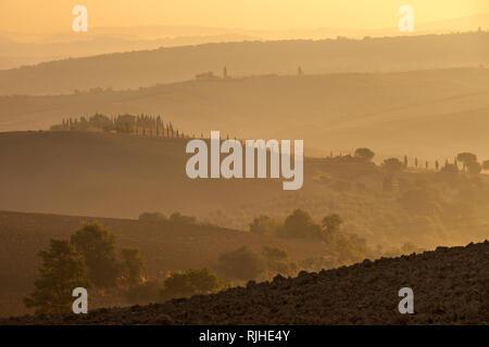 Misty Dawn über die sanften Hügel der Toskana, in der Nähe von San Quirico d'Orcia, Italien Stockbild