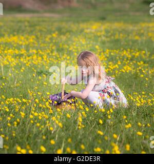 ein 3-jähriges Mädchen pflückt gelbe Blüten in einem Korb Stockbild