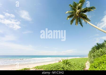 Balapitiya Strand, Sri Lanka - Gefühl in der Nähe von Paradise am wunderschönen Strand von Balapitiya Stockbild