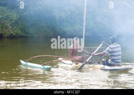 Madu Ganga, Balapitiya, Sri Lanka - Dezember 2015 - einheimische Fischer auf ein Kanu bei der Arbeit auf den Maduganga Stockbild