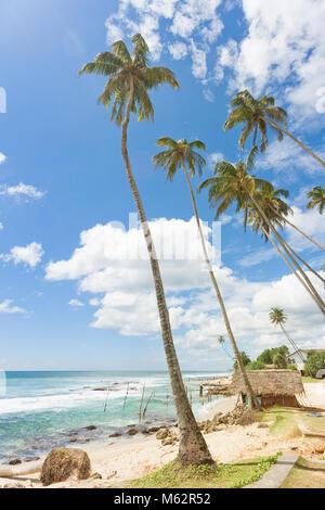 Koggala Beach, Sri Lanka, Asien - ein kleines, traditionelles Haus innerhalb von Palmen im Koggala Beach Stockbild