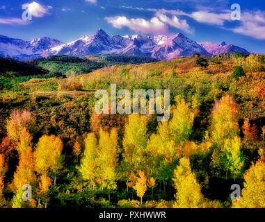 Espen in Herbstfarben mit San-Juan-Gebirge. Uncompahgre National Forest, Colorado Stockbild