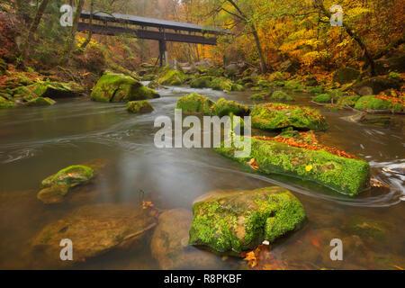 Eine überdachte Holzbrücke über einen Fluss in einem Wald in der Nähe von Irrel, Deutschland. Stockbild