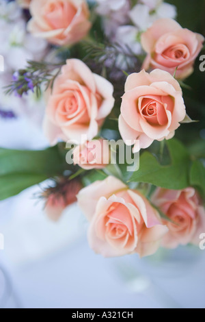 Bouquet von prink Rosen Stockbild