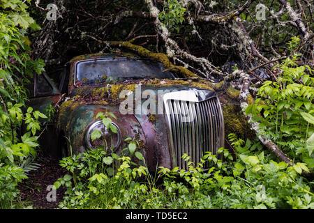 Bastnas Auto Friedhof tief in den Wäldern der Region Värmland in Schweden, Skandinavien, Europa Stockbild