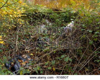 Woodland unkenntlich durch Schuttplatz Müll Stockbild