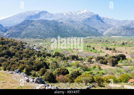 Kreta - Griechenland - Hochebene von Lassithi, Europa Stockbild