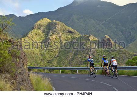 Männliche Radfahrer auf TF-12 Straße durch grüne Landschaft von anagagebirge im Nordosten von Teneriffa Kanarische Inseln Spanien. Stockbild