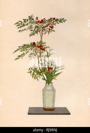NANDIN und weiße Lilie eine Anordnung für die Platzierung in einer Nische am Neujahrstag Stockbild
