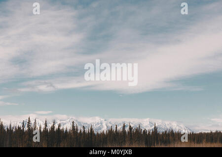 Bäume in der Nähe von Snowy Mountain Range Stockbild