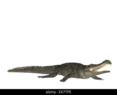 Sarcosuchus / Sarcosuchus Stockbild