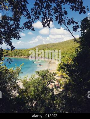 Ansicht des Strandes durch Laub - St. Lucia - Karibik Stockbild