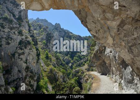 Cares Schlucht mit überhängenden Felsen und 800 m neben dem Weg in den Plätzen, Picos de Europa Berge, Asturien, Spanien, August 2016. Stockbild