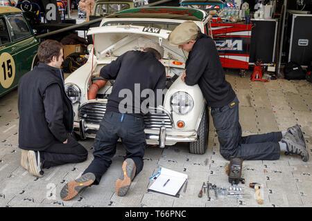 Mechaniker bei der Arbeit an der 1963 Morris Mini Cooper S von Darren Turner für die Betty Richmond Trophy. 77 Goodwood GRRC Mitgliederversammlung, Sussex, UK Stockbild