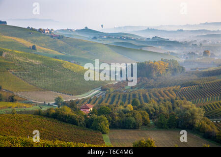Italien, Piemont (Piemonte), Cuneo, Langhe, Heißluftballone fliegen über Tal bei Sonnenaufgang Stockbild