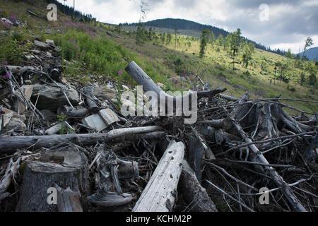 Fagaras Natura 2000-Gebiet/Rumänien: Riesige übersichtlich in ucea Mare Tal in Fagaras Gebirge Natura Stockbild
