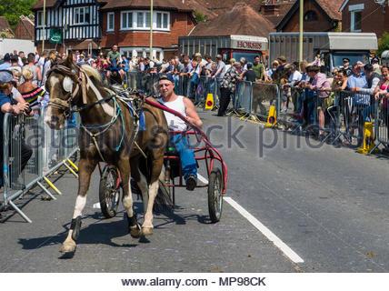 Wickham Horse Fair 2018 Stockbild