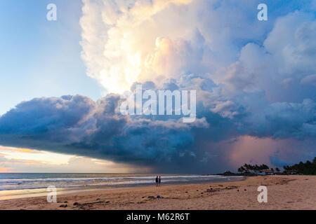 Induruwa Beach, Sri Lanka, Asien - herrliche Atompilz bei Sonnenuntergang am Strand von Induruwa Stockbild