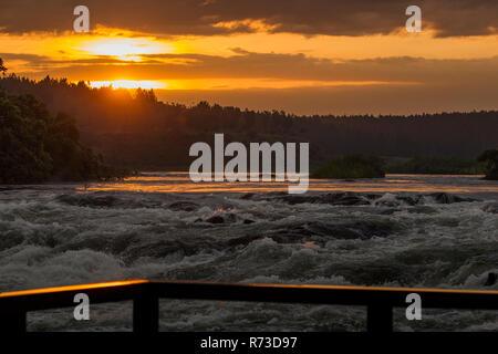 Hypoxie fällt, der Nil fließt mit starker Wasserströmung, Uganda Stockbild