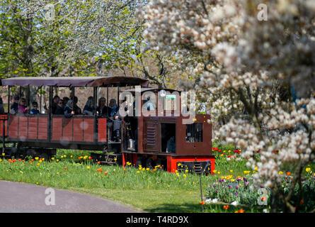 Berlin, Deutschland. 18 Apr, 2019. Der park Eisenbahn fährt durch den Britzer Garten bei schönem Wetter. Credit: Monika Skolimowska/dpa-Zentralbild/dpa/Alamy leben Nachrichten Stockbild