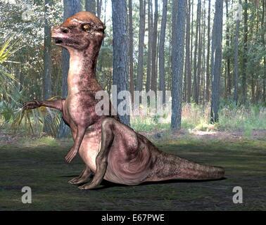 Dinosaurier Pachyosaurus / Dinosaurier Pachyosaurus Stockbild