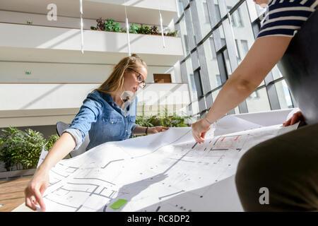 Kollegen Brainstorming über Diagramme in hellem Sonnenlicht Stockbild