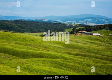 Landschaft, Volterra, Provinz Pisa, Toskana, Italien Stockbild