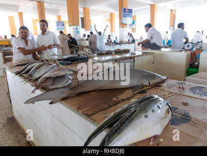 Haie für den Verkauf in der Fischmarkt, Jizan Provinz Jizan, Saudi-Arabien Stockbild
