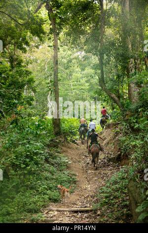 Campesinos Reiten entlang der Pueblito Trail im Herzen von Tayrona Nationalpark, Kolumbien, Südamerika Stockbild
