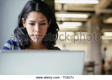 Geschäftsfrau, am Laptop arbeiten konzentriert Stockbild