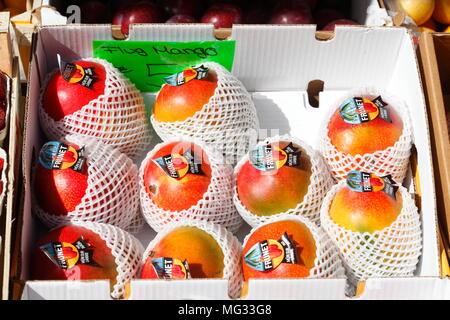 Frische Mangos in einem Karton auf einem Marktstand, Bremen, Deutschland, Europa ich frische Mangos in einem Karton mit einem Marktstand, Bremen, Deutschland, Euro Stockbild