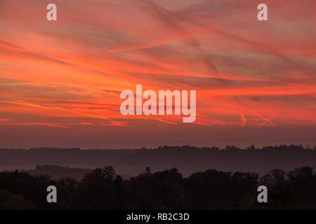Burning Red Sky mit einem schwarzen Wald mit Nebel und Schatten Stockbild
